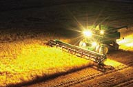 Harvesting at Night - Much more difficult than Daytime