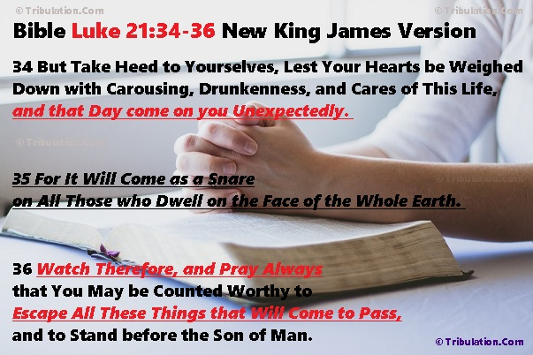Bible Prophecy from God's Holy Word